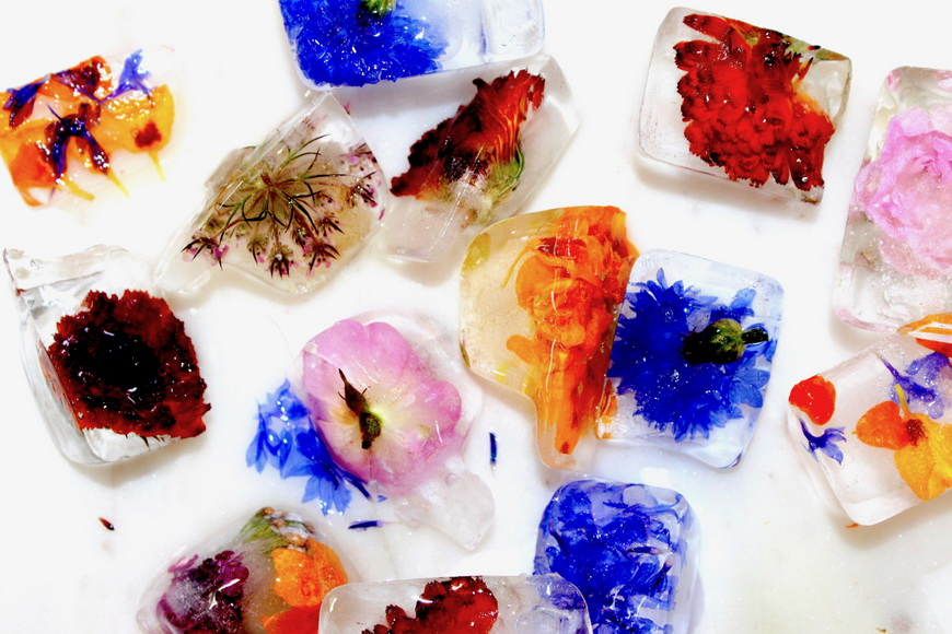 Floral Ice Cubes-3