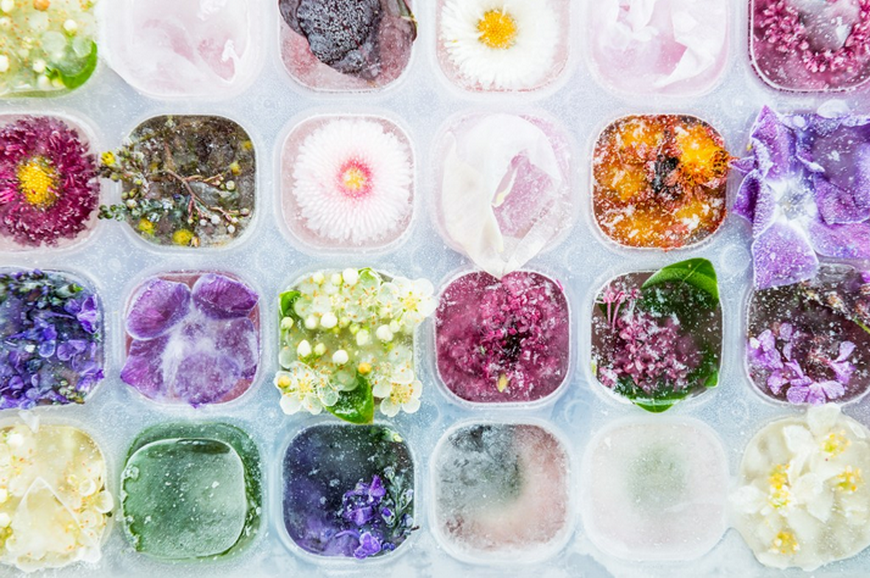 Floral Ice Cubes-photo 3