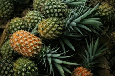 Як виростити ананас: Вибираємо фрукт