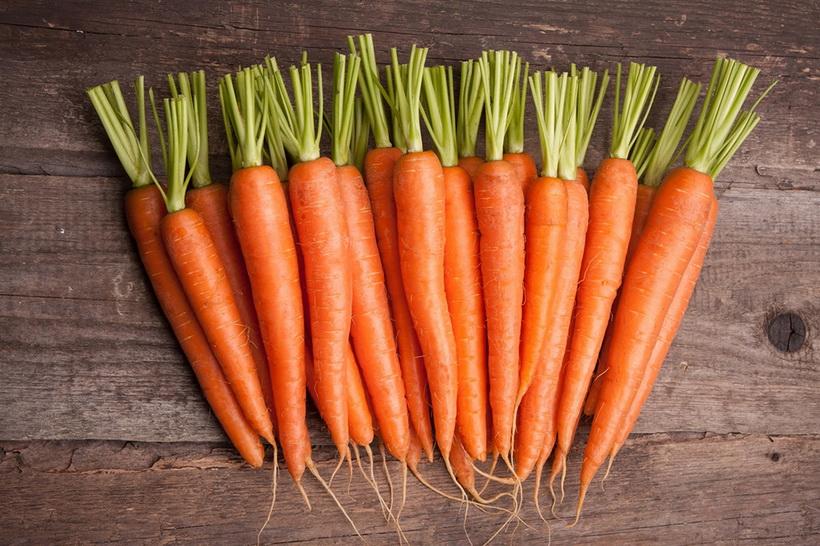 Молодая морковь-фото
