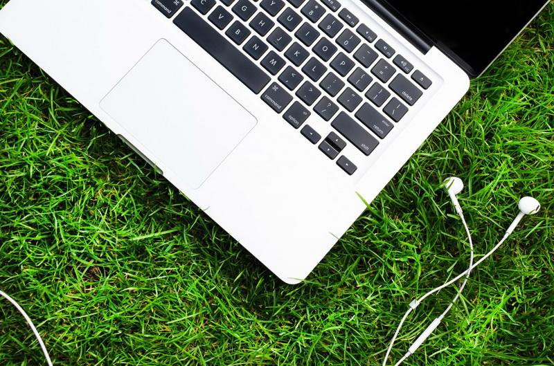Ноутбук-трава