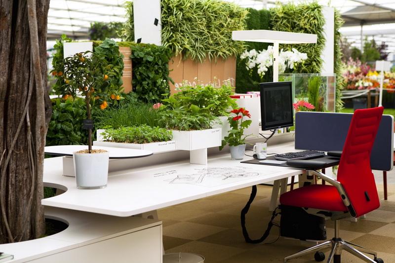 Офис-сад