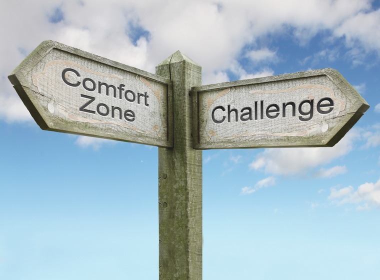 Comfort Zone/ Challenge Sign Concept