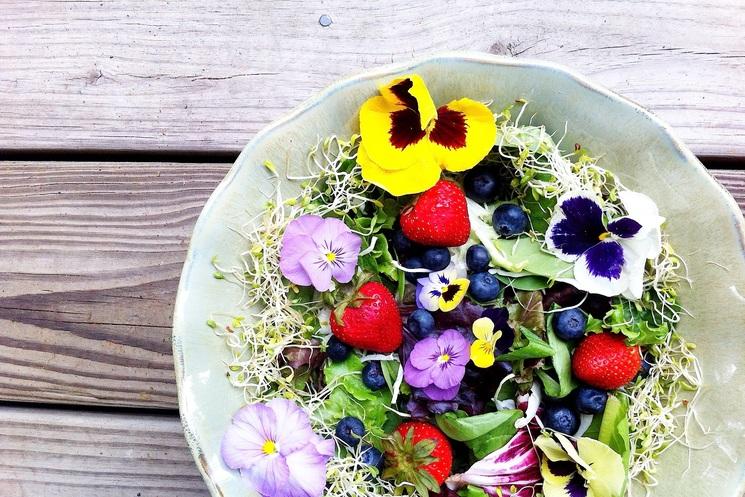 Съедобные цветы-как есть