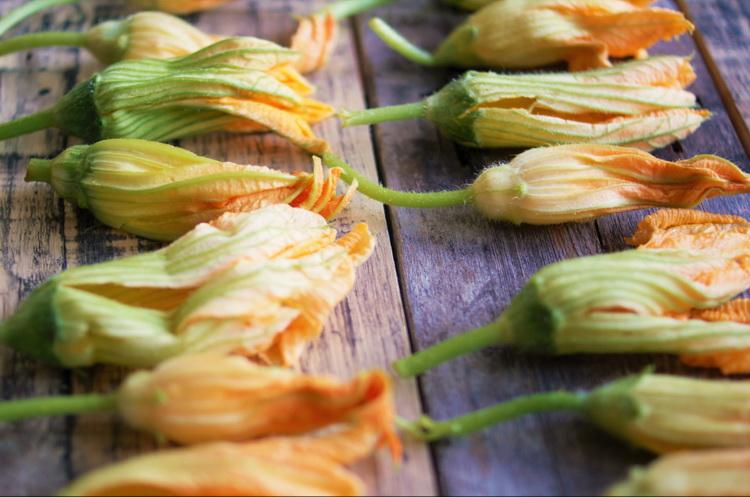 Цветы кабачка-что приготовить