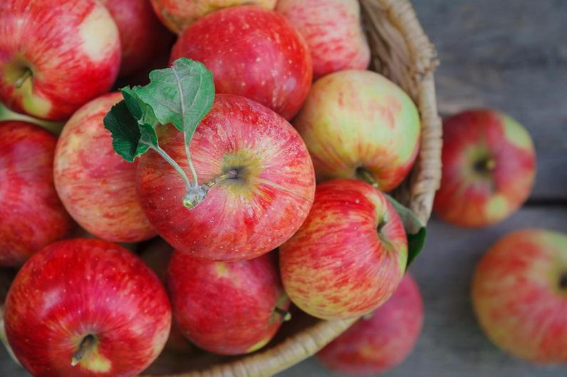 Яблоки-фото
