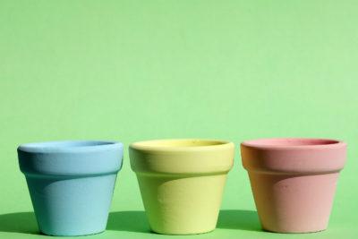 Как правильно пересаживать фикус: Выбор вазона