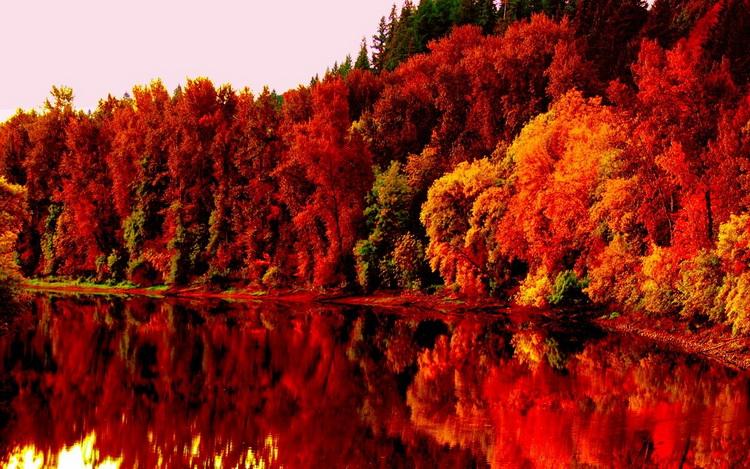 Краски осени-фото