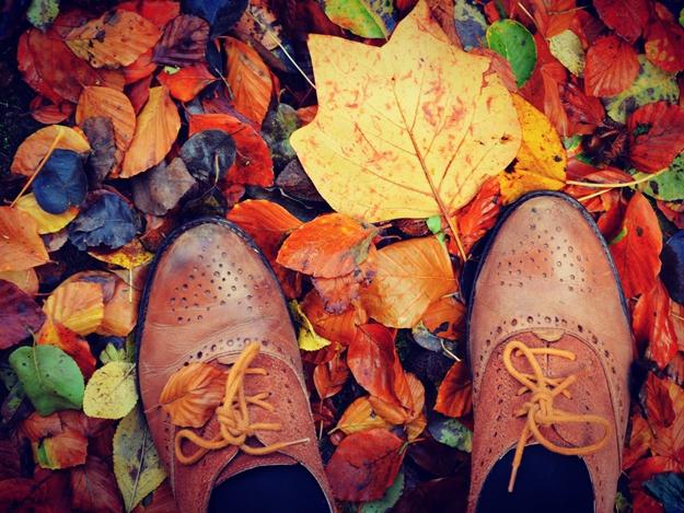 Осень-счастье