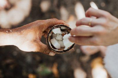Кусочки спелого кокоса