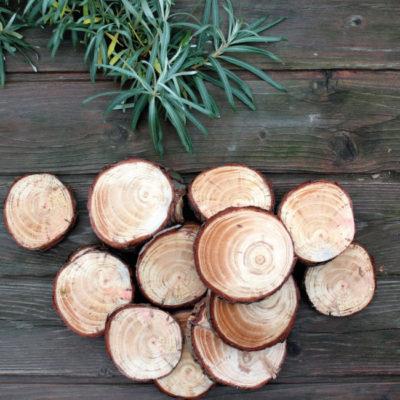 Зрізи дерева без обробки