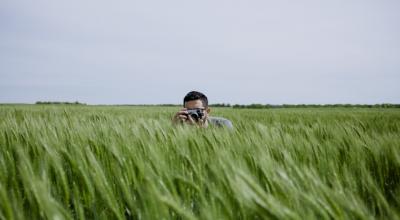 Знімок у полі