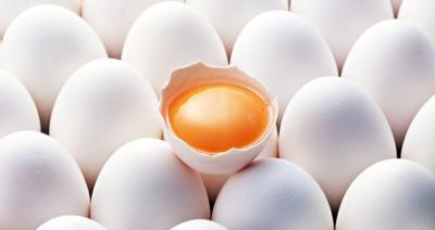 Курячі яйця та жовток