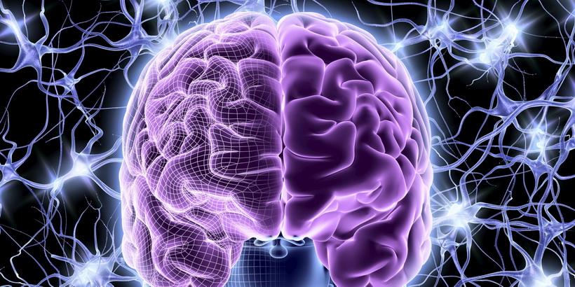 Мозг-работа.