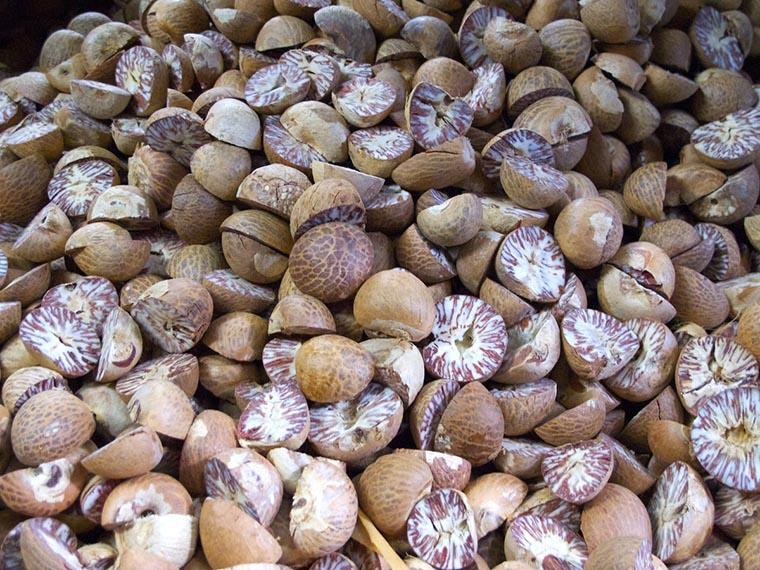 Урожай мускатного ореха