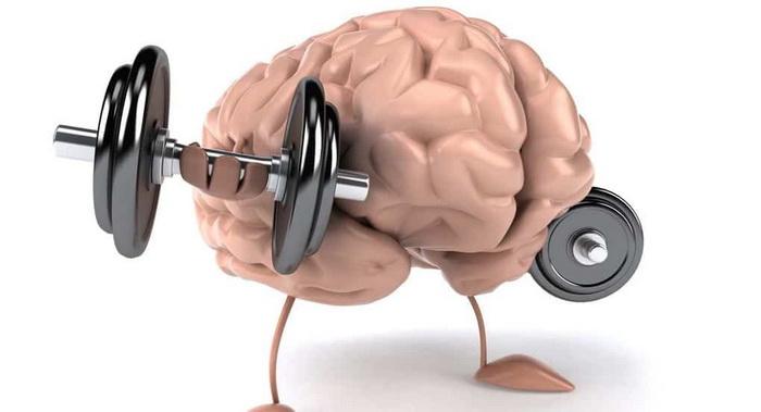 Физические нагрузки-мозговая активность