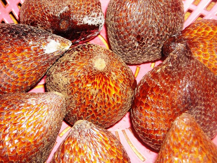 Плоды салака