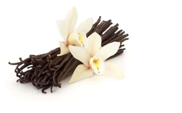 Ваниль-цветок
