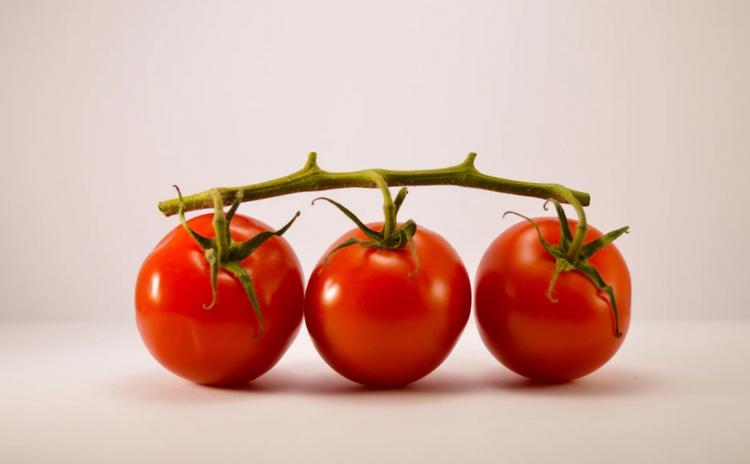 Помидоры-овощ