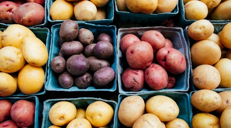 potato-виды