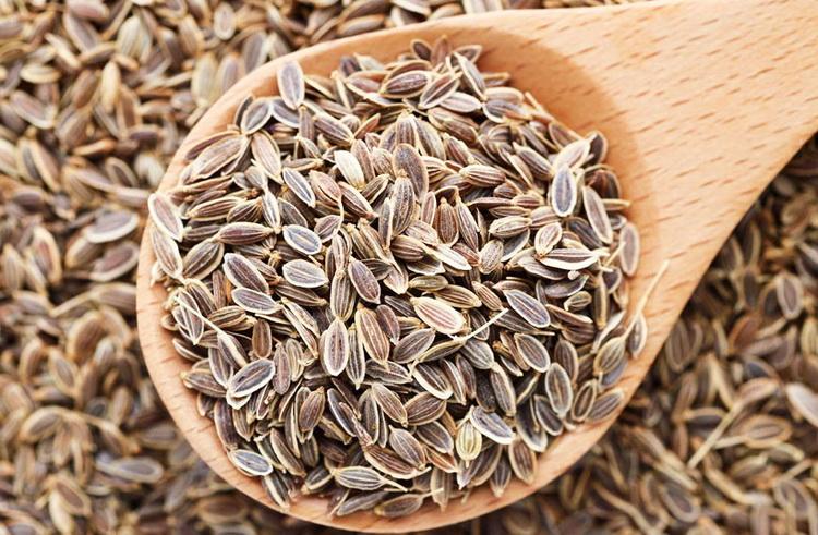 Семена укропа-приправа
