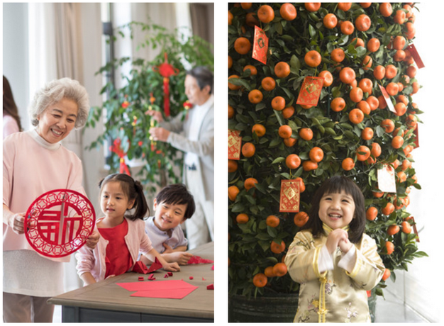 Украшение мандариновых деревьев-Новый год в Китае