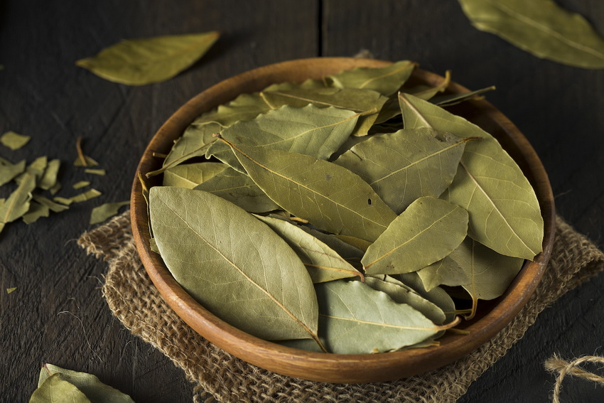 Bay leaf-recipes