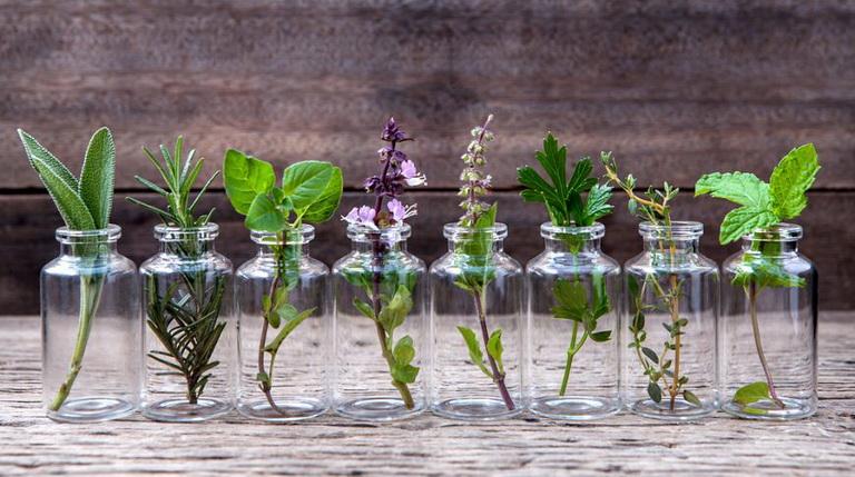 Букет гарни-какие использовать травы