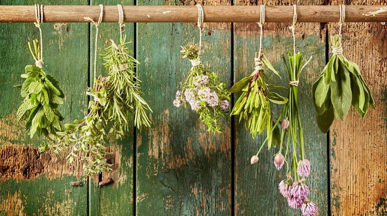 Пряные травы-что нужно для букета гарни.