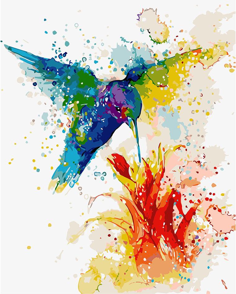 Картина по номерам «Разноцветный колибри»