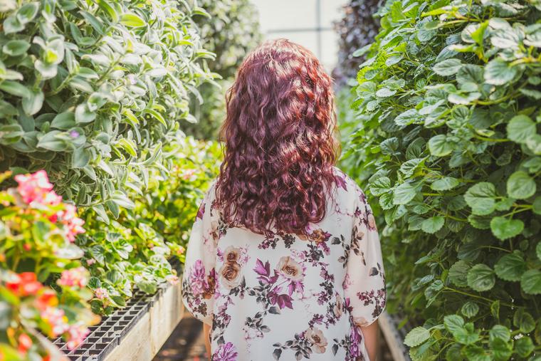 Бегония — популярное растение с обильным и нежным цветением