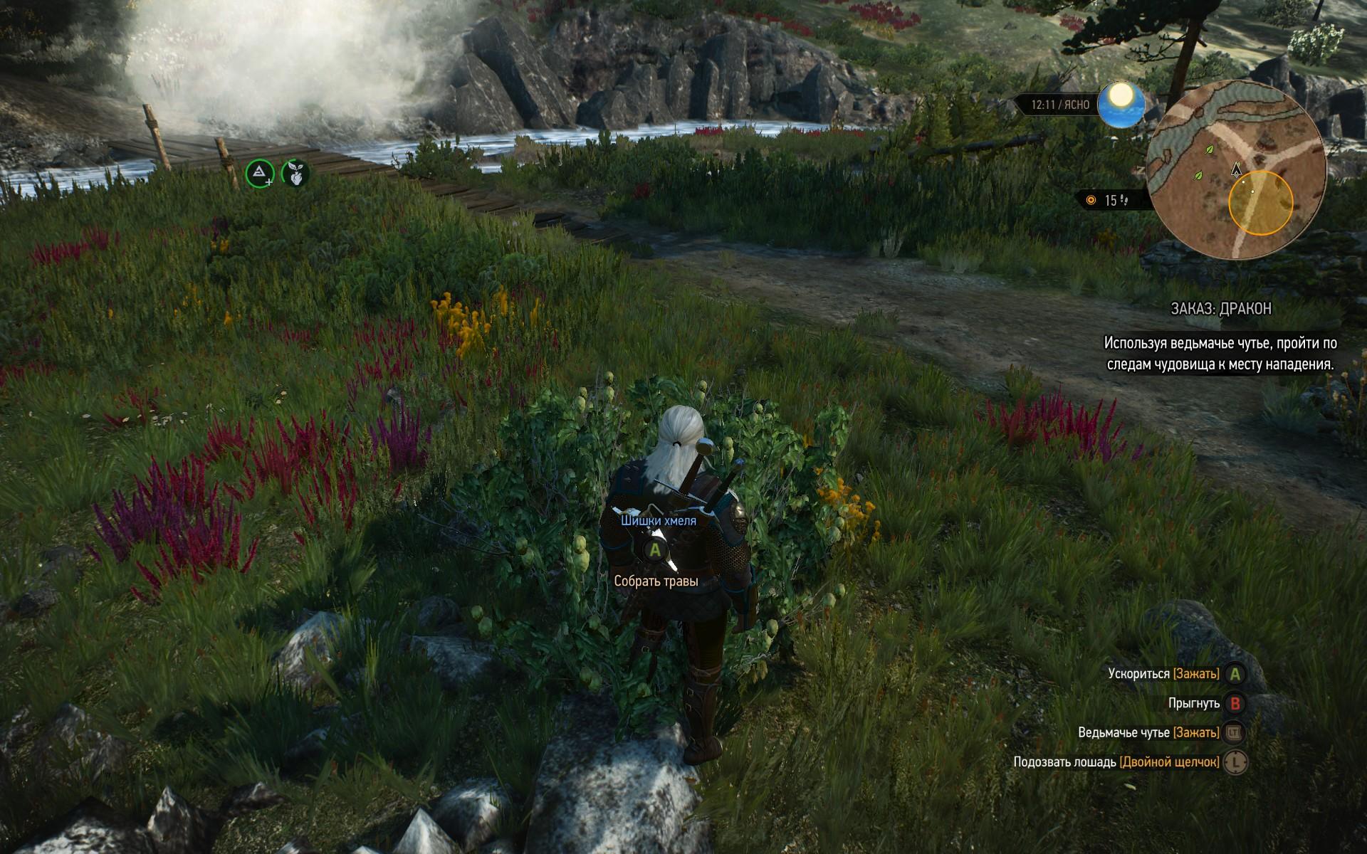 Хмель растет в игровом мире в виде кустарника