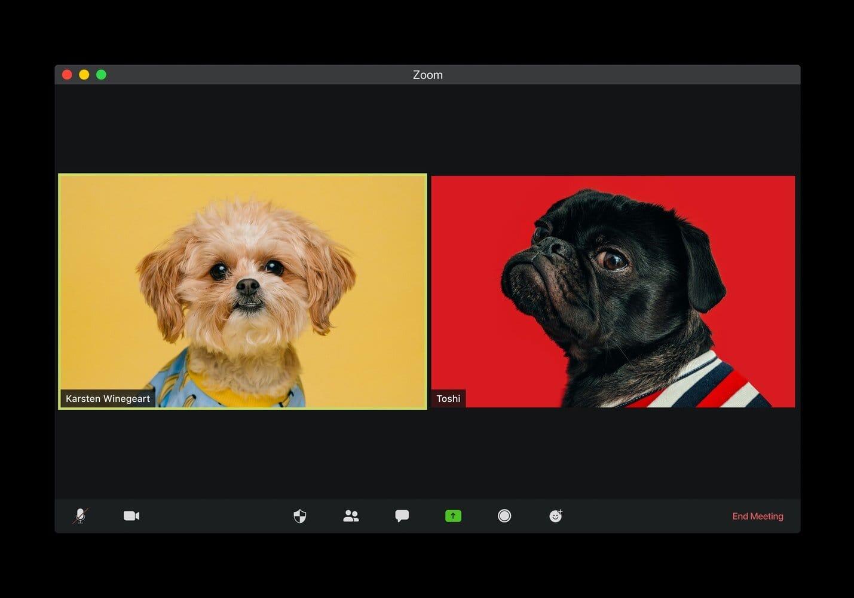 Kak-vybrat-webcameru-reyting-2